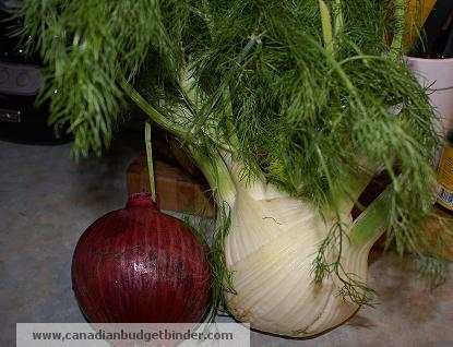 fennel and red onion