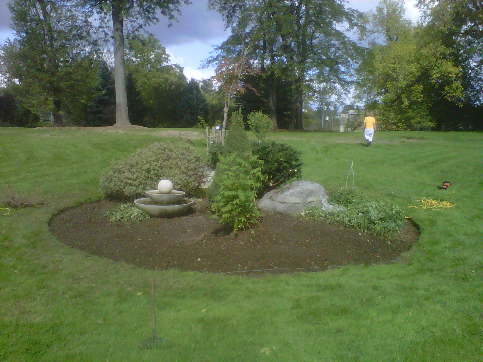 Landscaping Project After Thinning Out