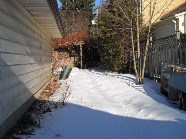 Before Landscaping Project- extra money