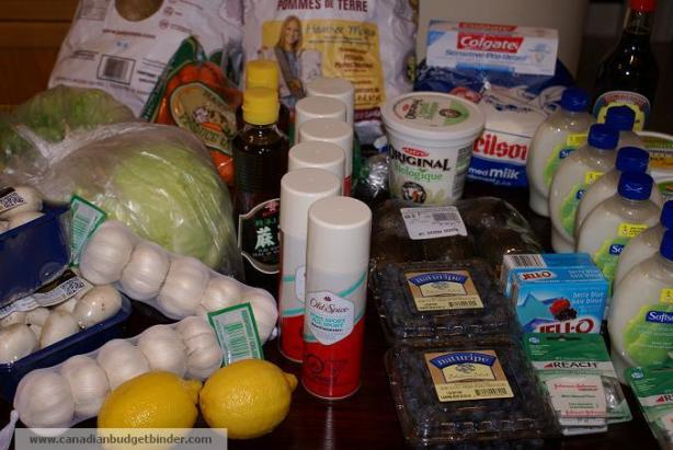 Grocery Game Challenge January 2013 shop