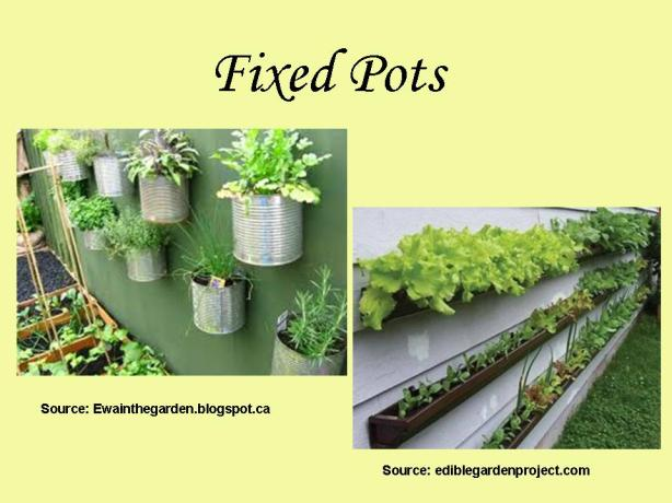 fixed pots gardening