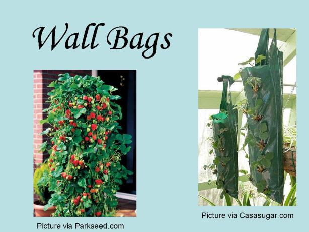 Garden Wall Bags