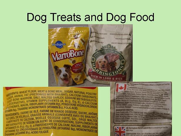 Dog-treats-and-Dog-Food