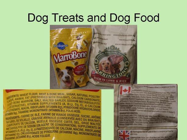 Dog-treats-and-Dog-Food