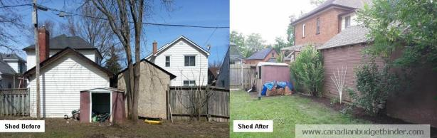 frugal-landscaping-shed-before-and-after-wm