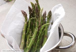 Organic Wild Asparagus