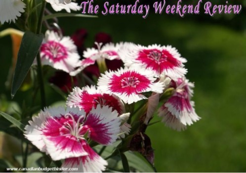 Pink and White Flowers The Saturday Weekend Review