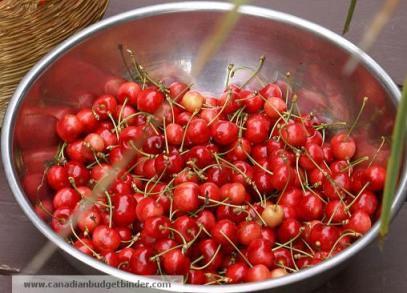 bowl-of-fresh-cherrries