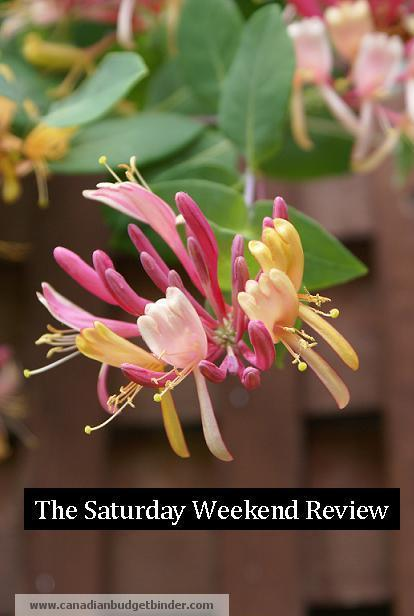 The-Saturday-weekend-Review-30-CBB