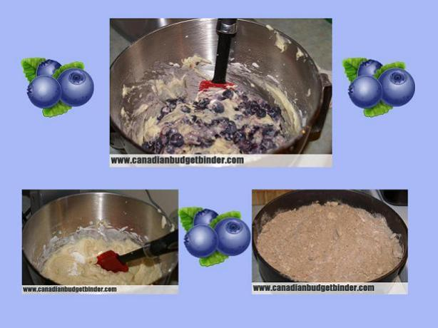 putting-the-blueberry-cake-together