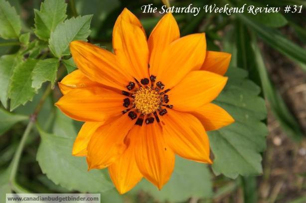 The-Saturday-Weekend-Review-31