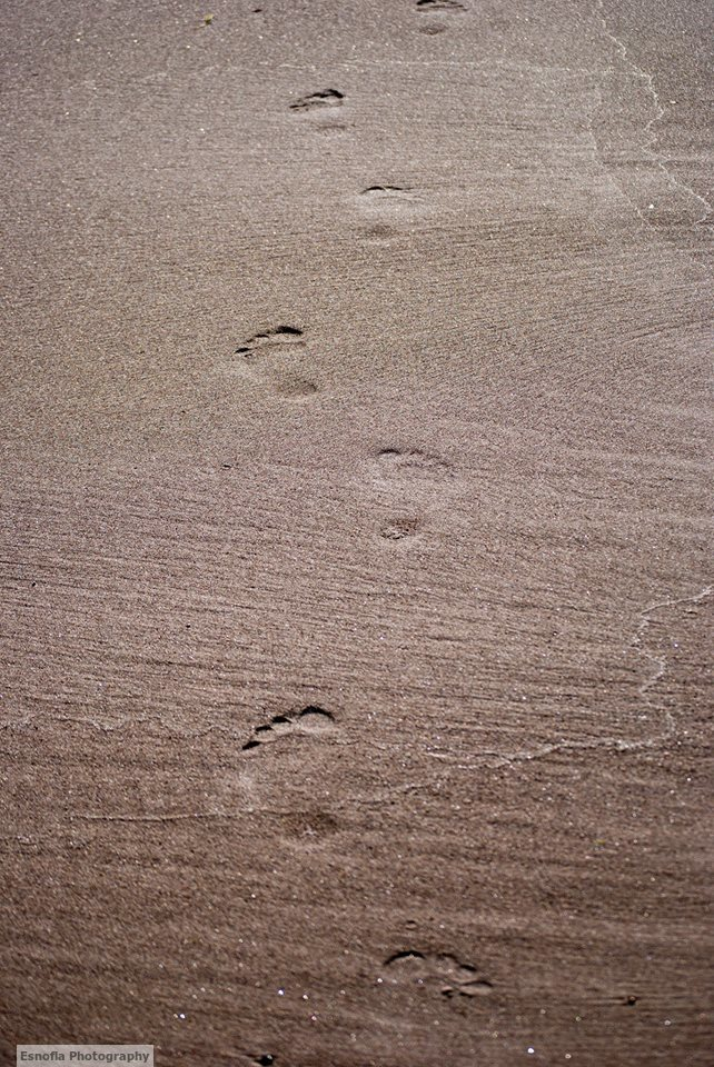 footprints-in-the-sand